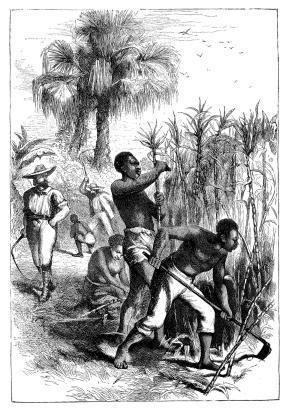 1200-535984779-attempts-to-abolish-of-slavery.jpg?w=288&h=410&profile=RESIZE_710x