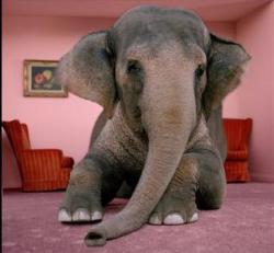 elephant-living-room1.jpg?w=250&h=232&profile=RESIZE_710x