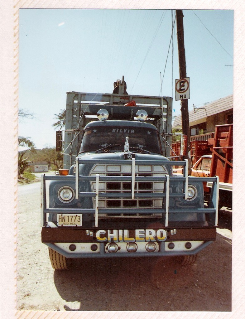 truck-dichos.jpeg?w=787&profile=RESIZE_710x